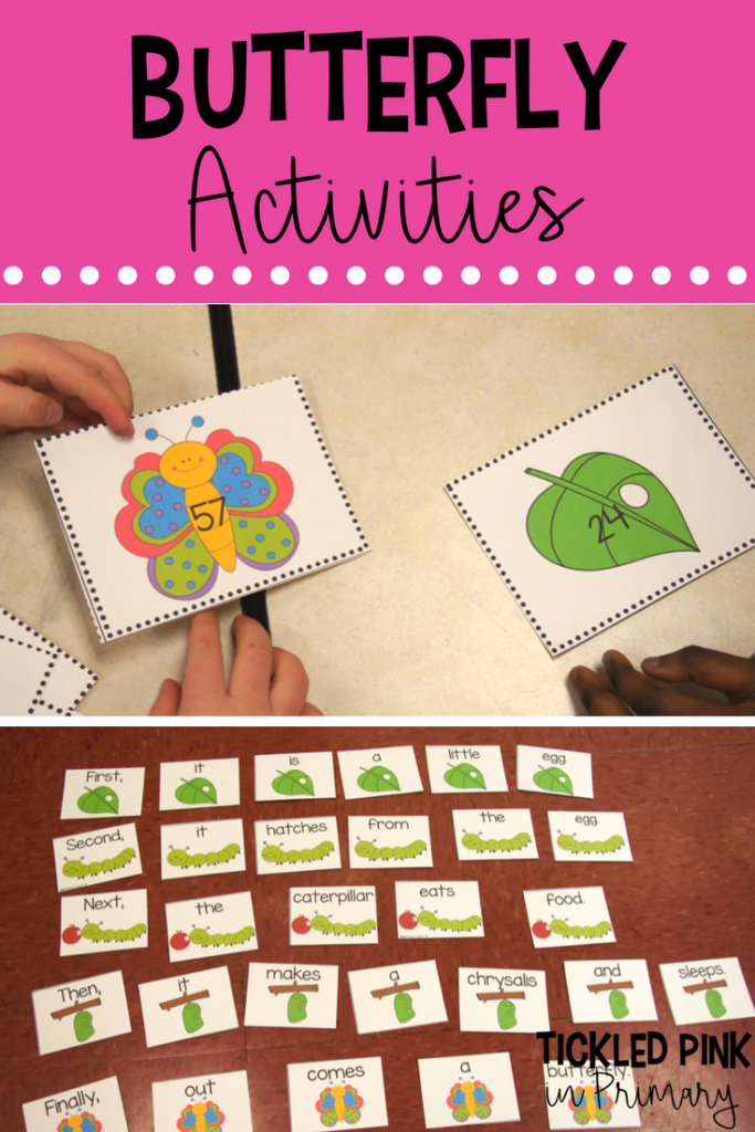 Life Cycle of Butterflies - Butterfly Literacy Activities Math