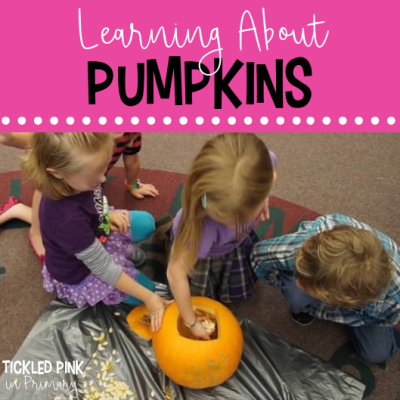 ideas to learn about pumpkins