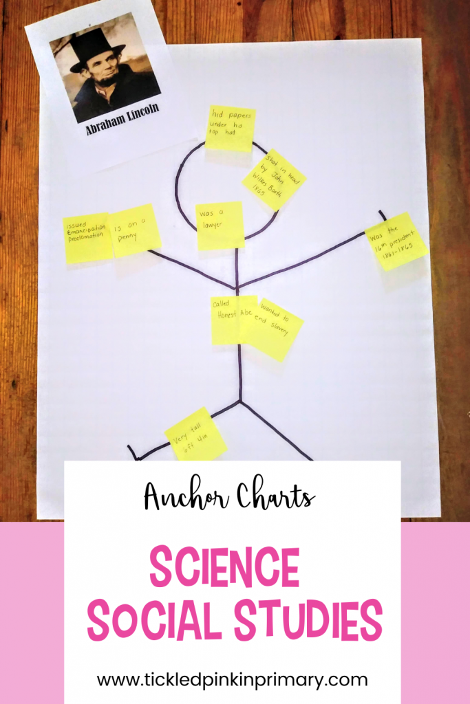 Anchor charts for Science and Social Studies lessons.