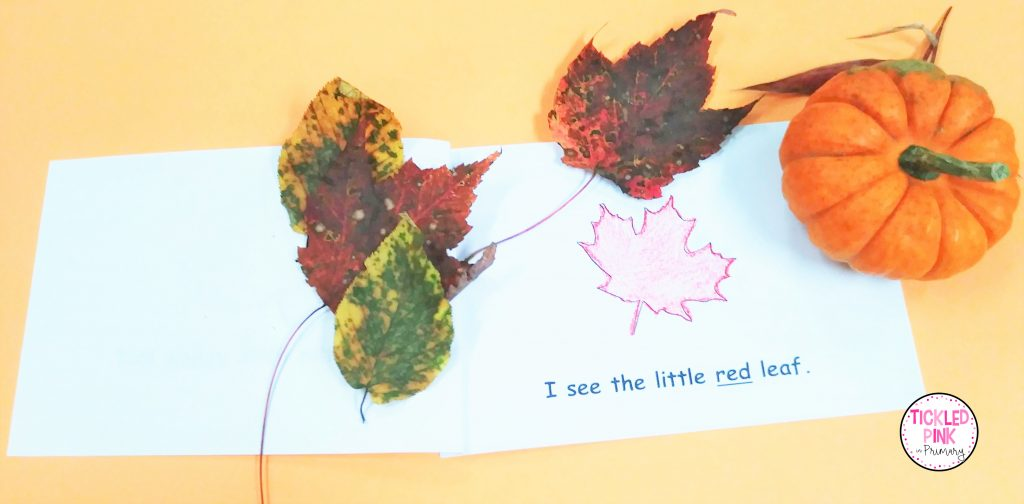We're Going on a Leaf Hunt read aloud activity for Fall.